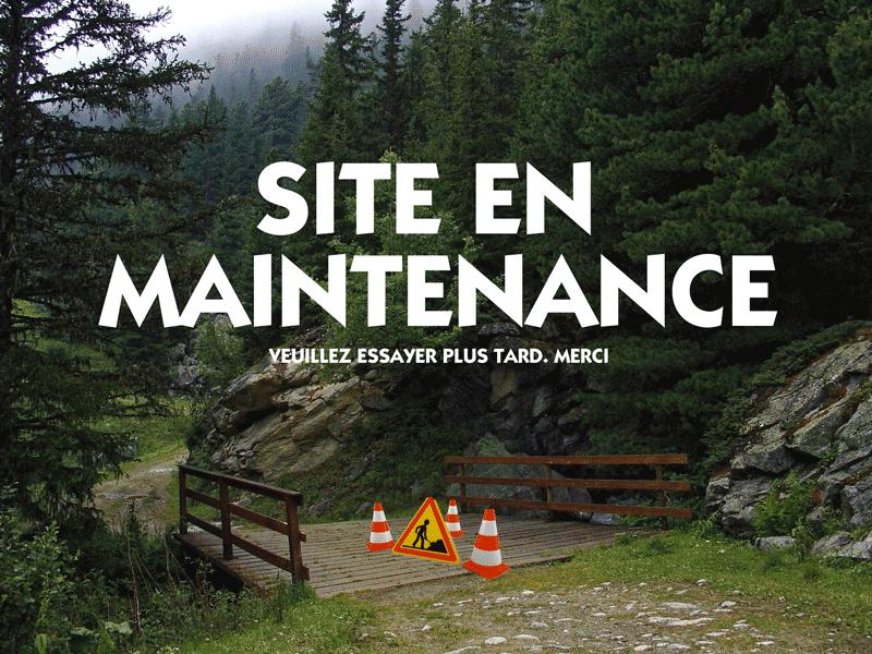 petit pont site en maintenance